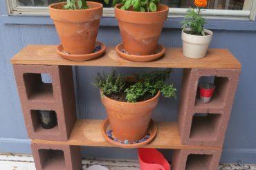 Herb Garden Redux